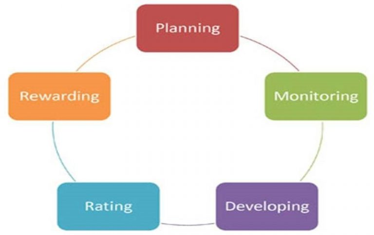 model of performace management